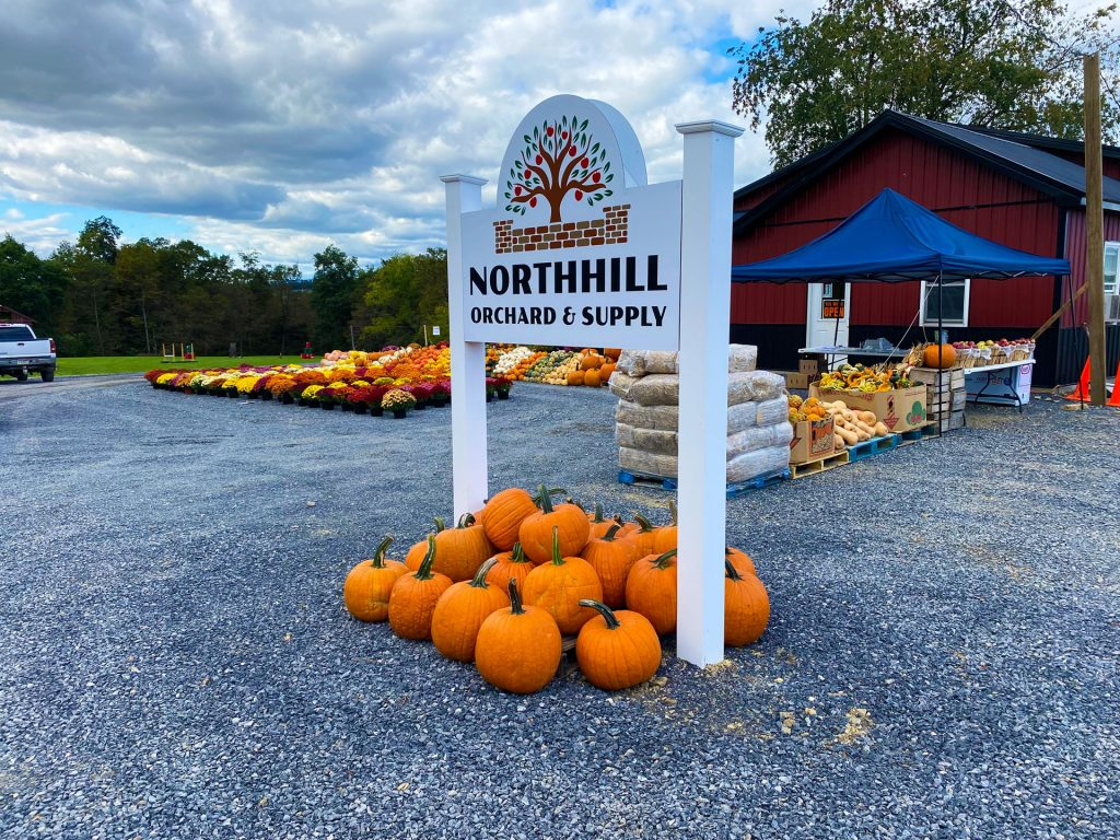 apple picking fall market at northhill orchard 2